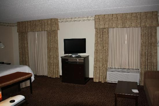 Hampton Inn & Suites Staten Island: King Suite