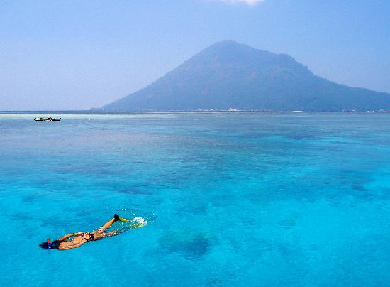 Bunaken Cha Cha Nature Resort: Snorkeling