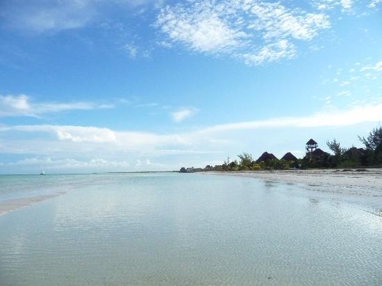 Villa los Mangles : White soft sand beaches