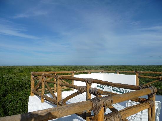 Villa los Mangles : view