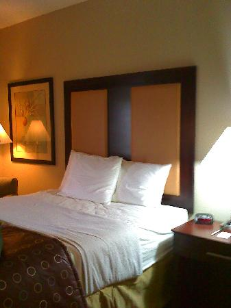 La Quinta Inn & Suites Lancaster: Bed