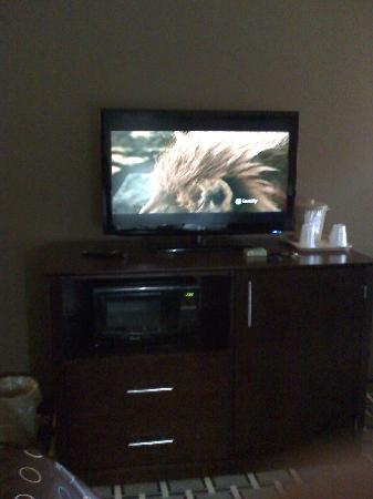 La Quinta Inn & Suites Lancaster : TV