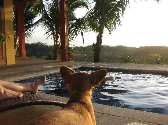 Costa Rica Yoga Spa : chillin' with Chica