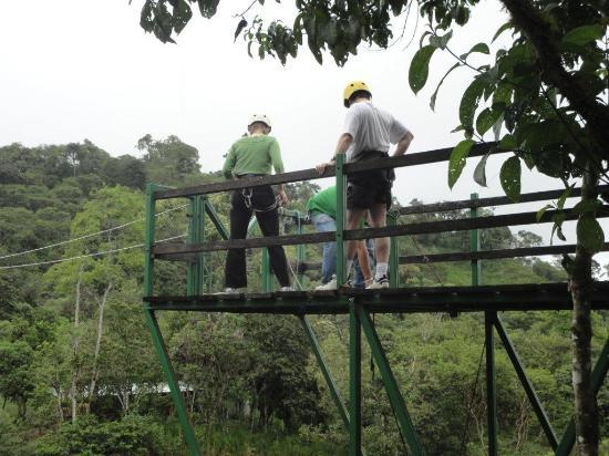 Mountain Views Inn: Ziplining over the Rain Forest