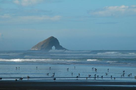 Ninety Mile Beach: Hole in the rock  seen from 90 mile beach