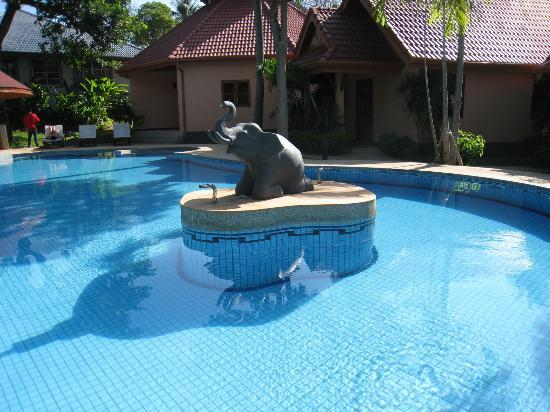 The Happy Elephant Resort: Piscine