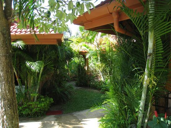 The Happy Elephant Resort: Ambiance verdure