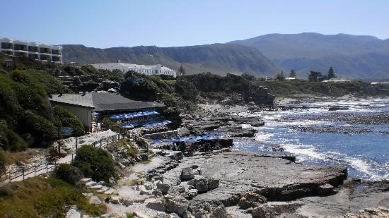 Beluga House: Fiskrestaurang Two Oceans i centrum Hermanus