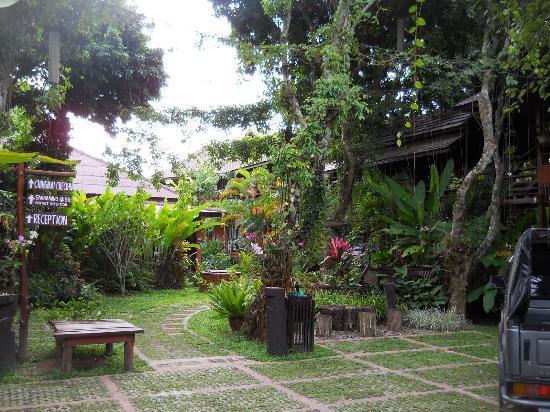 Nam Khong Guest House : garden