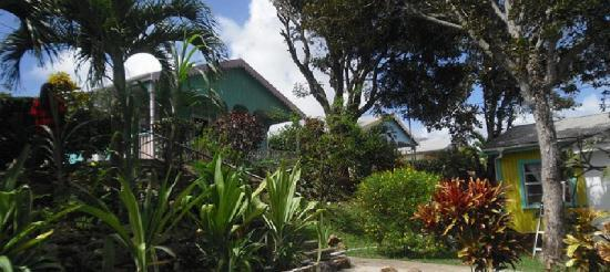Oceanic View Exclusive Vacation Cottages : Hill top Cottage In this tranquill place