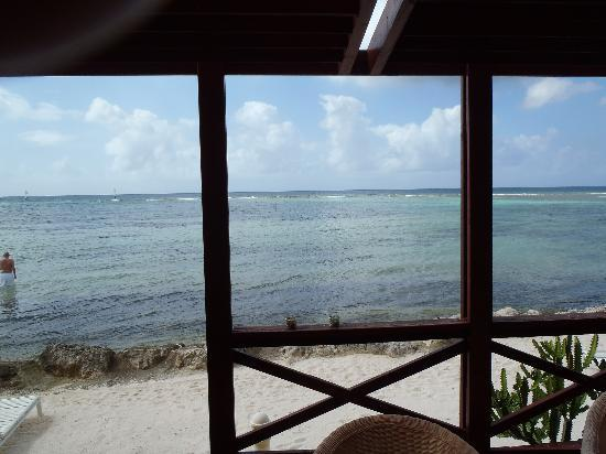 Aruba Beach Chalets : View from dining area