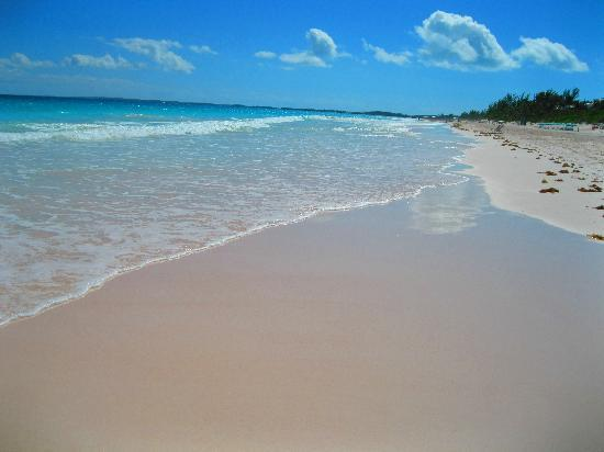 Pink Sands Beach: miles of beach, and very few people