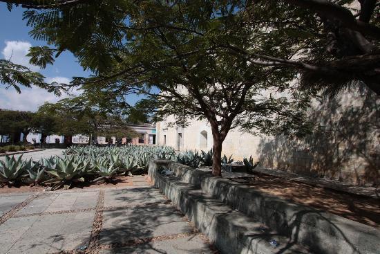 Hotel Azul de Oaxaca: Centro Historico