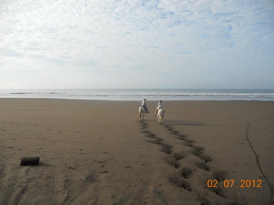 Santiago de Puriscal, Costa Rica: First tracks on the beach