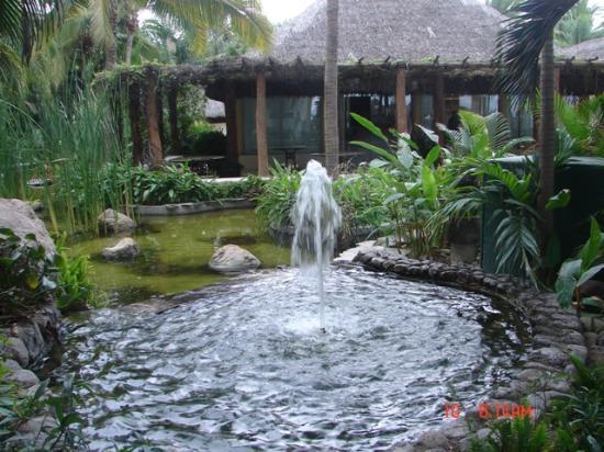 Bel Air Collection Resort & Spa Vallarta : Lush tropical grounds.
