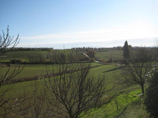 Agriturismo Pacinina: My view reading Gibbon's Decline and Fall