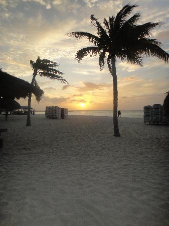 Hotel Riu Palace Aruba: maravilloso atardecer