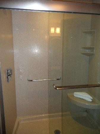 Bentley's Inn: Glass shower and seat