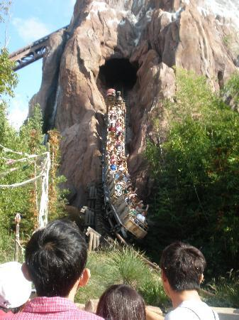 Mt. Everest ride - Picture of Disney's Animal Kingdom, Orlando ...