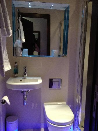 BEST WESTERN Seraphine Kensington Gardens Hotel: View of bathroom