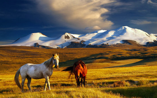 Siberian District, Russia: Plateau Ukok, South Altay
