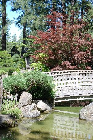 Manito Park : Japanese Garden Bridge