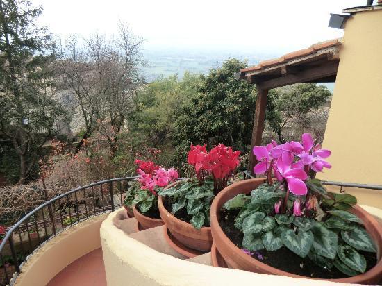 Hotel Posta Panoramic: i fiori della signora Paola!