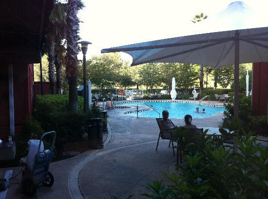 Hilton Garden Inn Orlando at SeaWorld: Pool Area