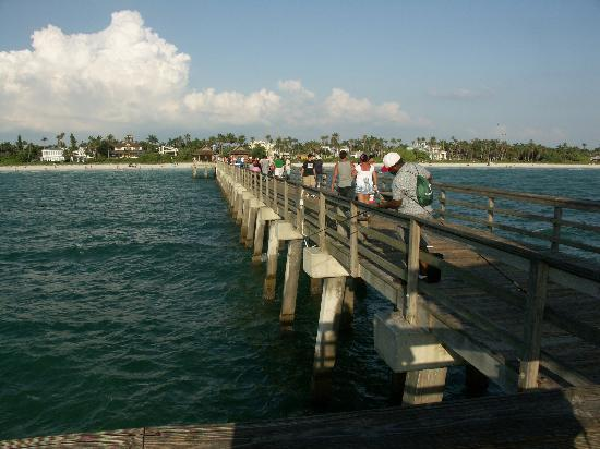 Fishing on the pier picture of naples pier naples for Fish naples fl