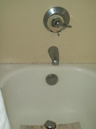 Days Inn Sarasota: shower didn't look so clean, and parts were broken