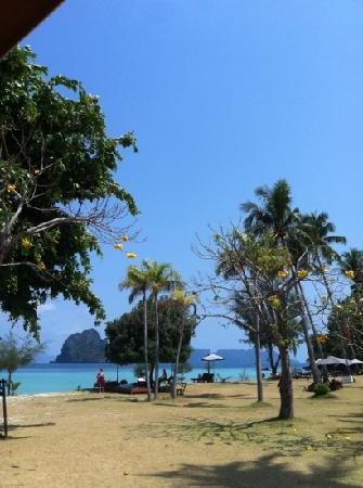 Koh Ngai Thanya Beach Resort: view of the main pool area, very picturesque..