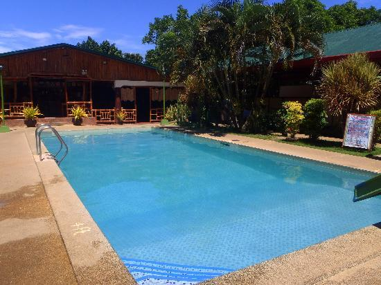Angela's Farm: pool near at bar & restorant