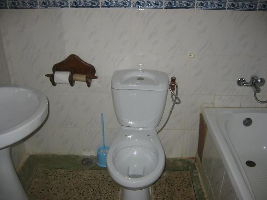 The Nelly's Inn: clean toilet but note missing seat