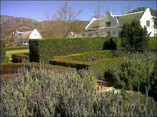 ستينبيرج هوتل: Herb Garden