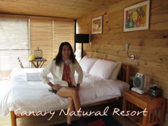 Canary Natural Resort: วิว 2