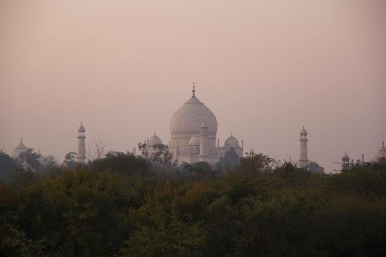 The Oberoi Amarvilas: Taj Mahal in the early morning