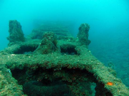 Bucea en Marbella: Grua bajo el mar
