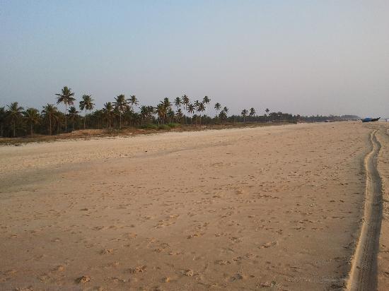 Cansaulim Beach: Beach