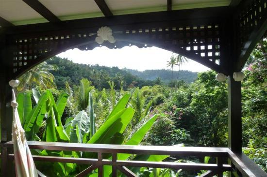 Fond Doux Plantation & Resort: The view from my terrace