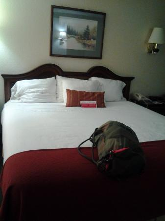 Super 8 Huntersville/charlotte Area : huge bed