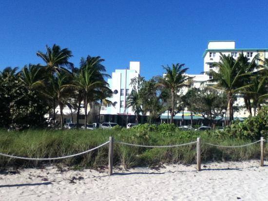 Hawaii Hotel: vista del hotel frente a playa
