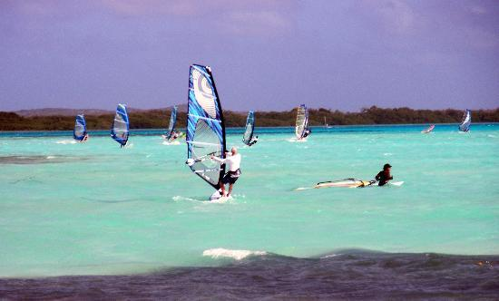 Sorobon Beach Resort: Windsurfing right next door at Jibe City