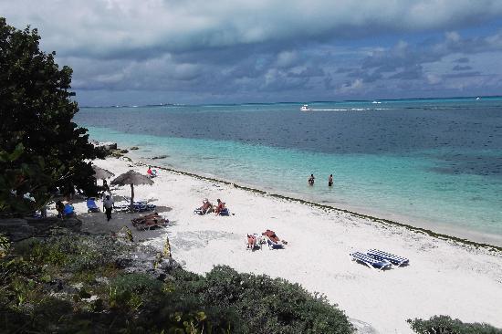 Hotel Maya Caribe Beach House: Beach