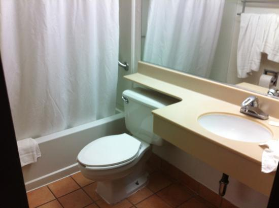 Days Inn I-40/Flagstaff: Bathroom