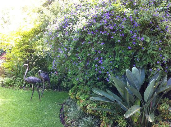 写真Cotswold Gardens Guest House枚
