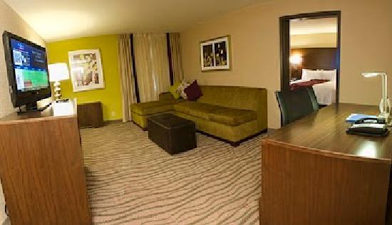 Fairfield Inn & Suites Dallas DFW Airport South/Irving: One Bedroom Suite