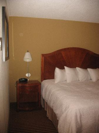 Hampton Inn Roanoke / Hollins / I-81: Very Comfy
