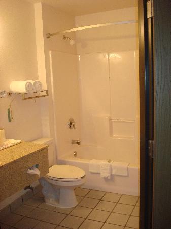Ramada Platte City Kci Airport: Room 308 Bath