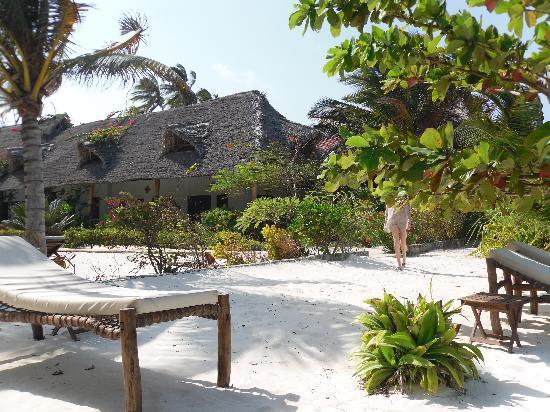 Next Paradise Boutique Resort : Camere veranda vista mare