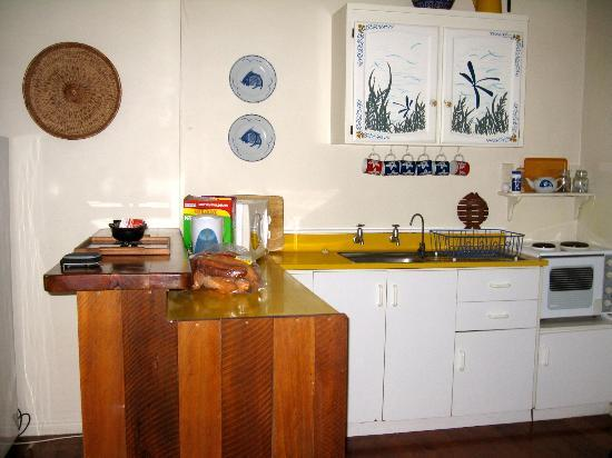 Pagoda Lodge : Kitchen in one of the villas